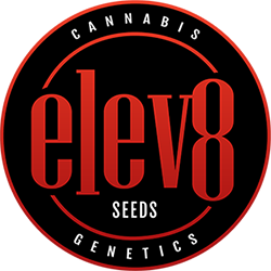 elev8 email logo