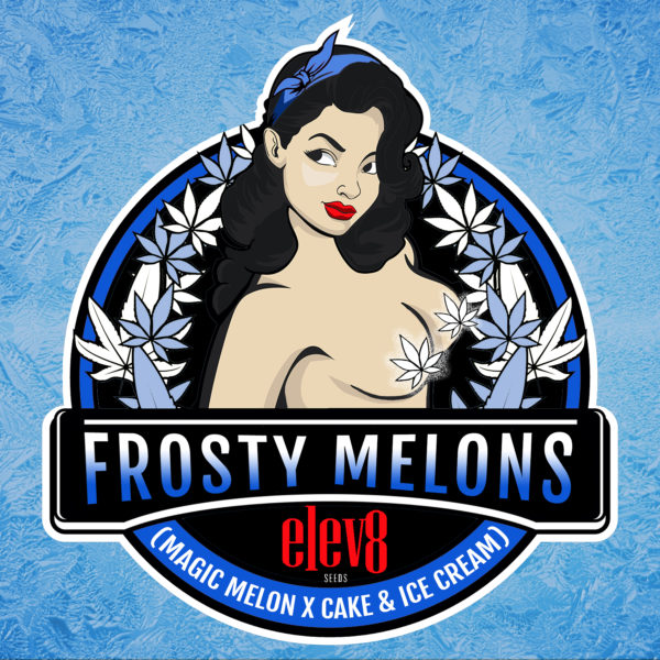 Frosty Melons Square